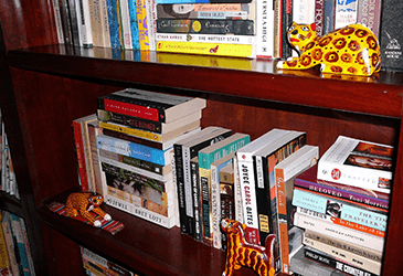 Decluttering Your Bookcases image